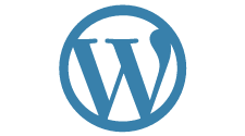 WE are the best WordPress development company USA with core expertise in creating responsive and secure websites.